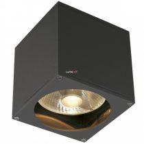 SLV 229565 BIG THEO kültéri fali lámpa 1xGU10 max.75W