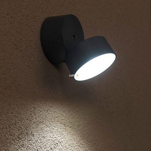 LUTEC 6260 GR TRUMPET 11W LED IP54 fali szürke kültéri lámpa