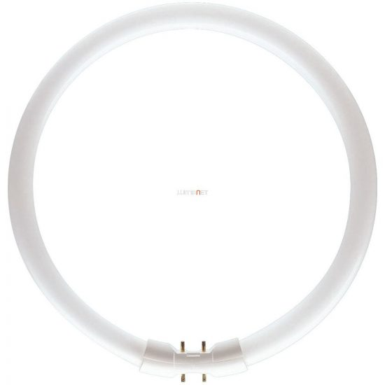 Philips Master TL5 CIRCULAR 60W/830 2GX13 367mm
