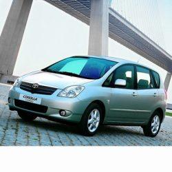 Autó izzók halogén izzóval szerelt Toyota Corolla Verso (2001-2004)-hoz