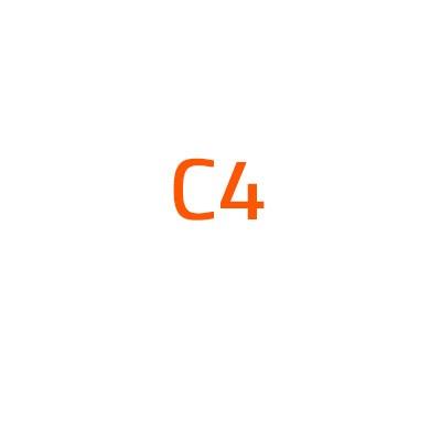 Citroen C4 autó izzó