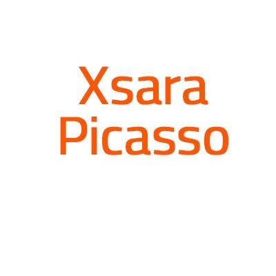 Citroen Xsara Picasso autó izzó