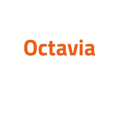 Skoda Octavia autó izzó