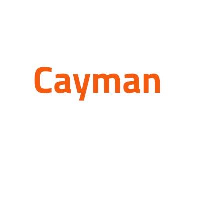 Porsche Cayman autó izzó