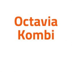 Skoda Octavia Kombi autó izzó