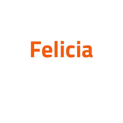 Skoda Felicia autó izzó