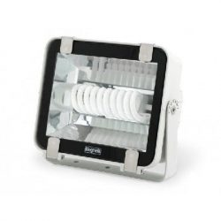 Compact Fluorescent Lamp Floodlight