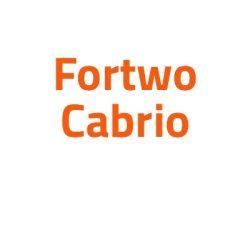 Smart Fortwo Cabrio autó izzó