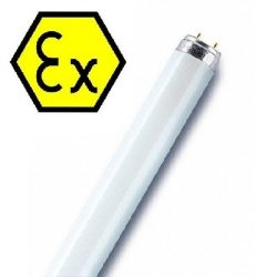 Blow up Proofed Fluorescent Lamps