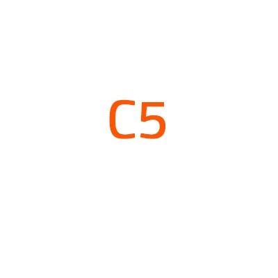 Citroen C5 autó izzó