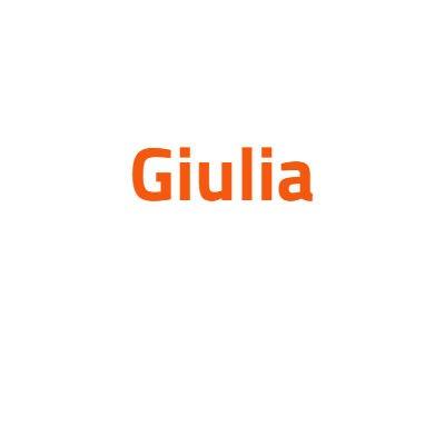 Alfa Romeo Giulia autó izzó