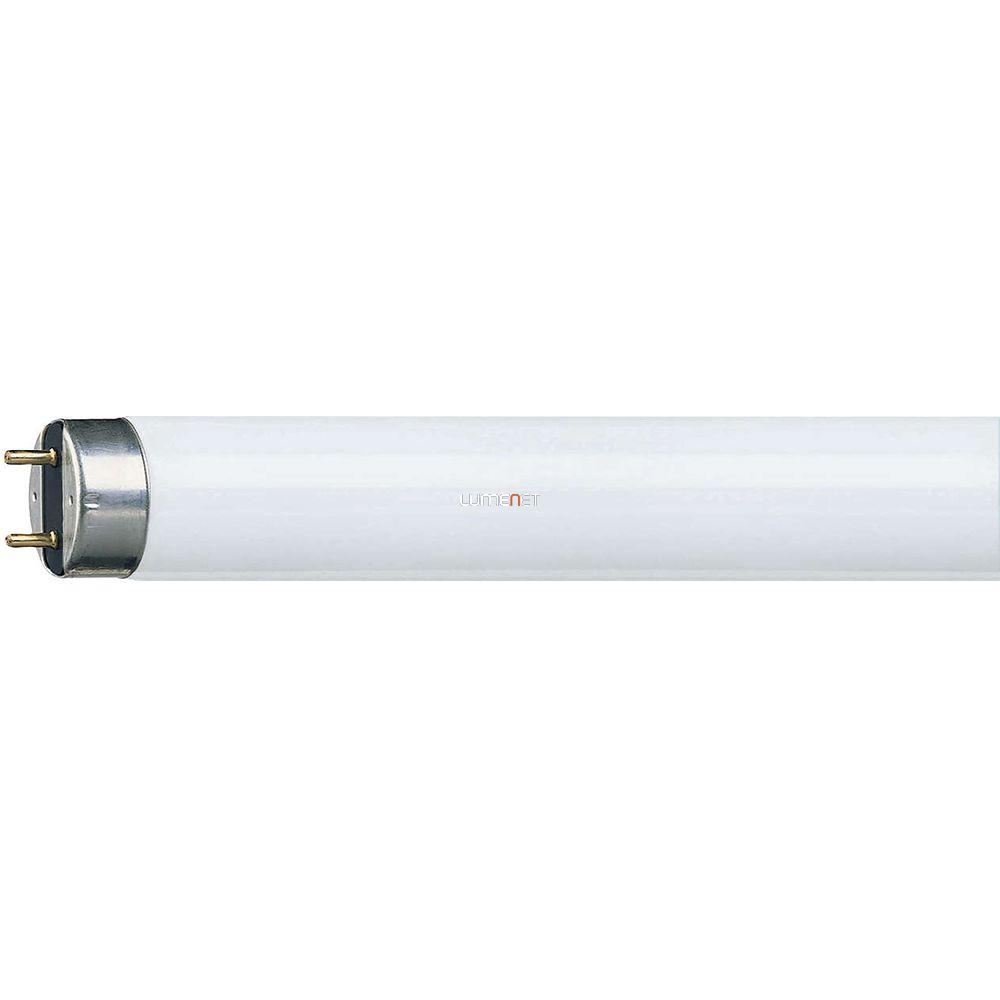 PHILIPS MASTER TL-D Super 80 18W/827 590mm