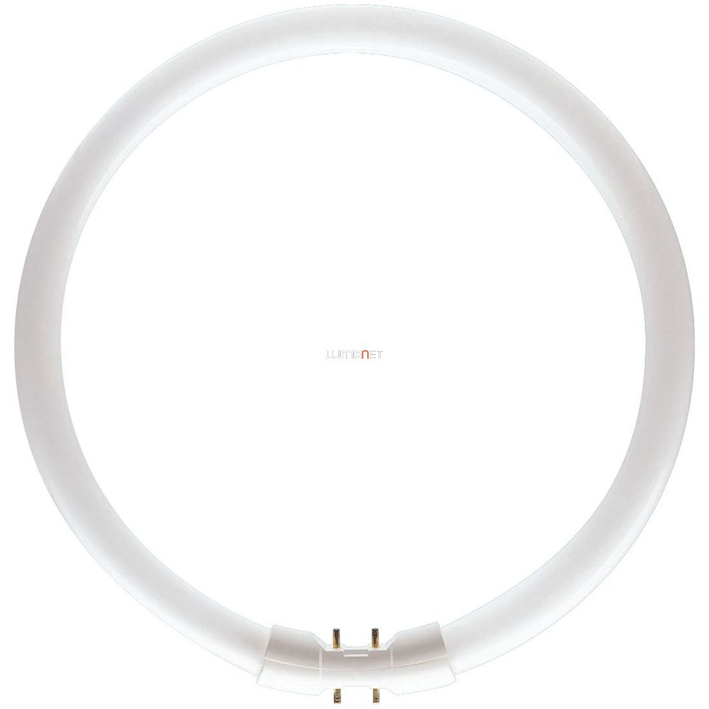 PHILIPS MASTER TL5 CIRCULAR 60W/840 2GX13 367mm
