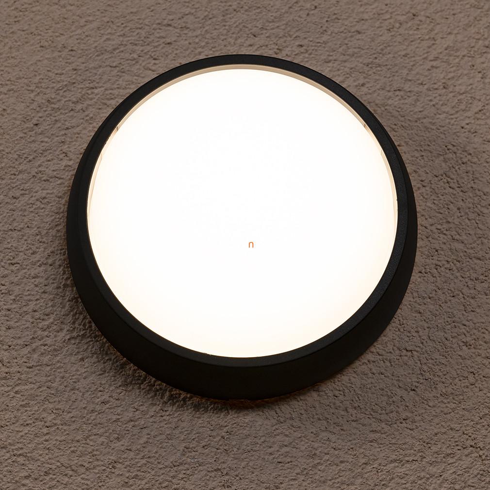 PHILIPS 17304/30/16 Eagle fali lámpa LED fekete 1x3W