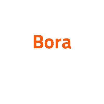 Volkswagen Bora autó izzó