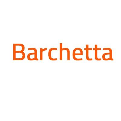 Fiat Barchetta autó izzó