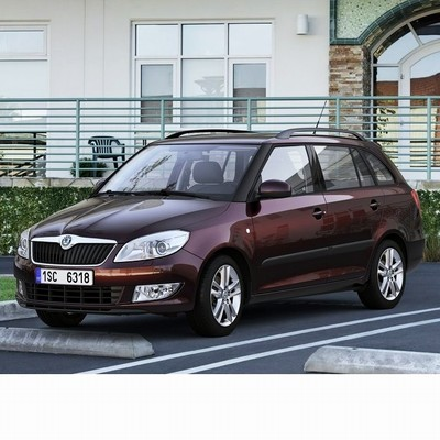 Autó izzók halogén izzóval szerelt Skoda Fabia Kombi (2007-2014)-hoz