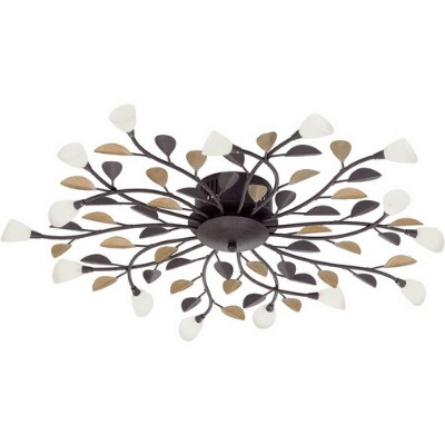 Indoor Ceiling Lamps