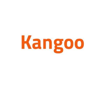 Renault Kangoo autó izzó