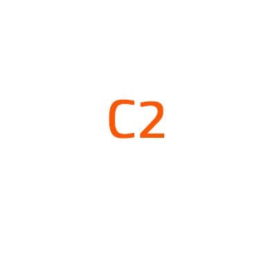 Citroen C2 autó izzó