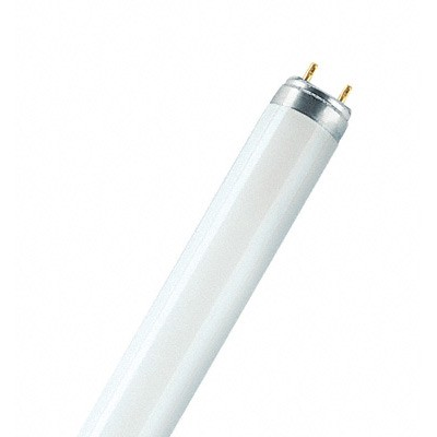 Colored T8 Fluorescent Lamps