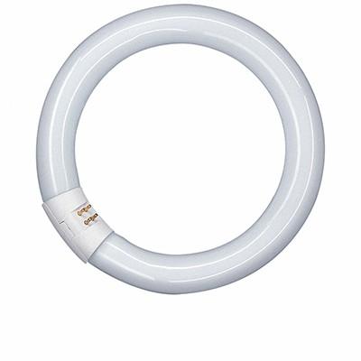 T9 Circular Fluorescent Lamps