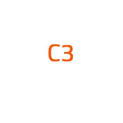 Citroen C3 autó izzó