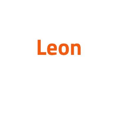 Seat Leon autó izzó