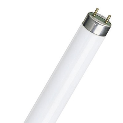 Philips T8 Fluorescent Lamps