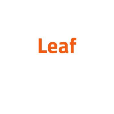 Nissan Leaf autó izzó