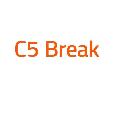 Citroen C5 Break autó izzó